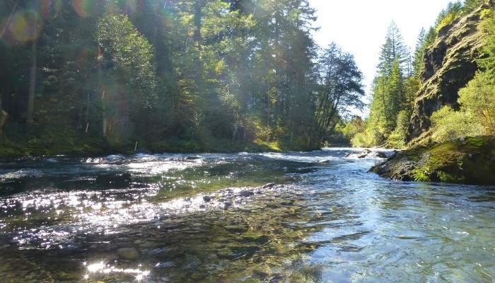 McKenzie River Trust - Photo of McKenzie River